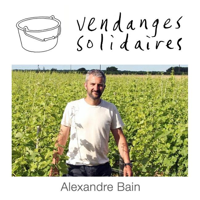 Domaine Alexandre Bain
