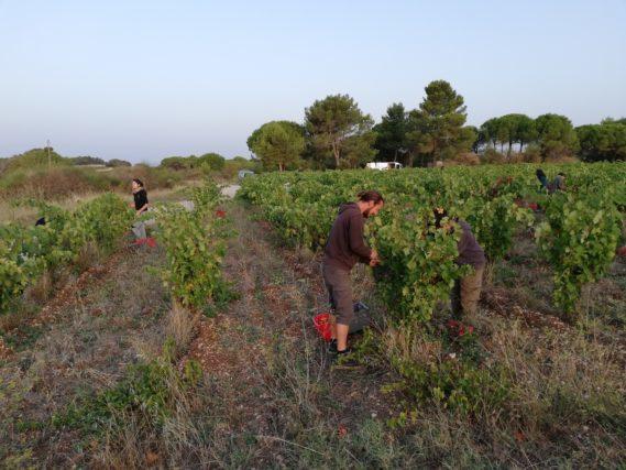 Edouard Fortin a perdu sa récolte suite à des inondations en 2018